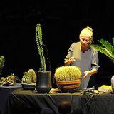 Música y Ecología: nuevos descubrimientos científicos + canciones hechas por plantas y para plantas