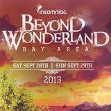 Gareth Emery - Live @ Beyond Wonderland San Francisco (USA) 2013.09.29.