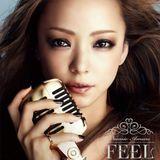 NAMIE AMURO「FEEL」 Tour 2013 Songs~dJ.unkers mix~