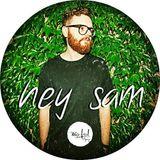 hey sam - mix feed presents megapolis.fm #32 [12.15]