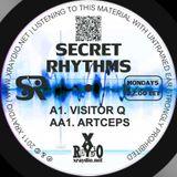 Visitor Q - Now Modern Electronics (Secret Rhythms #42)