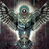 Heart Warriors - ( Ambient,Tribe,Shamans,Mantra )