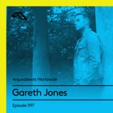 Anjunabeats Worldwide 597 with Gareth Jones