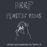 Deep Plastic Vibes [22-01-2013] mixed and selected by Salvo B