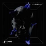 SAPYENS MIX 04 - Wallwork