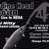 Live in Nesia sardine head+bocca (2015/09/22)