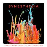 Synesthesia - A Skyecatcher & Fitz Collaboration