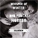 Whisper of winter - Drum&Bass podcast - NORBBO
