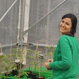With a little help from my fungus: interview with Ainhoa Martínez-Medina