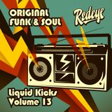 Redeye Liquid Kicks Volume 13