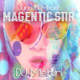 MAGNETIC STIR ~ DJ Meirlin's June 2015 Live Mixset