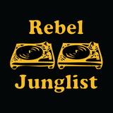 Dj MaSa - The Old Junglist