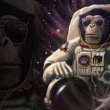 disco space monkey part 2