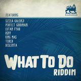 Faya Gong - What to Do Riddim mix promo 2017