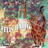 Felis Radio: Centipede Radio