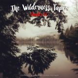The Wilderness Tapes: Chapter 02 - Mixed by Chris Rayner