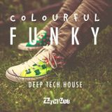 Funky Deep - Colourful Tech House Mix 2013