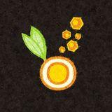 Orange Romeda - Live @ Ciclo sin Forma parte 3 (El Bolsón, 18/07/2015)