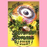 DJ Sway J Summa' Summa' 2016
