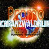 Massie @ Schranzwaldklinik - hardtechno vinylsession 5.817