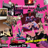 EBM #006 - Birdy Nam Nam Presents Dance Or Die