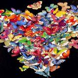 Mind Games ep. 26 - Butterflies