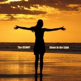 The BSMNT: Alone In The Light