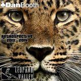 Dan Booth - Leopard Valley Retrospective 2013 - 2014