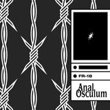 FR18 – Anal Osculum
