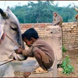 ragga india goa sitar by sadre khan /soundlab Goa trance compositions raji