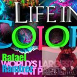 Life in Color Contest Set