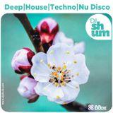 DJ Shum - Spring Mix   Deep   House   Techno   Nu Disco