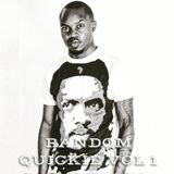 RANDOM QUICKIE VOL 1