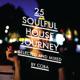 Soulful House Journey 25