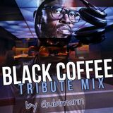 Black Coffee Tribute Mix - By DJ Gubimann (Afrohouse Munich) - South African House, Soulful House