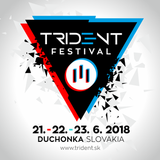Lion Dee - III TRIDENT FESTIVAL PROMO MIX 2018 (Back To The Oldskool Night) (Only Vinyl)