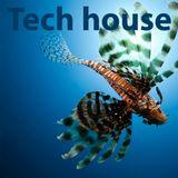 TechHouse set vol.1 mixed by FlyingDutchman