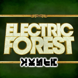 Electric Forest 2017 - Zomby's Forest