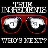 True Ingredients - DJ/Vocals Demo 2010