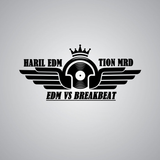• Haril [ EDM ™ ] • Music Special Breakbeat VS EDM Episode 4 Ft [TION MRD].