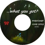 "...""what you got...?"" Mish'Chief June 2012 mix"