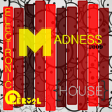Electronic Madness #009 {House}