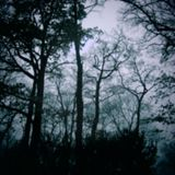 Akim Hash - Autumn Dreamers