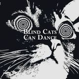 Blind Cats Can Dance