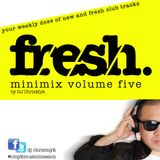 FRESH Minimix by DJ ChrisMyk Volume 5