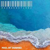 Dubmax - Raumakustik #02