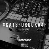 #catsfukuoka4f (April / 2017)