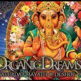 DJ Set @ Organic Dreams, Belgium (Free Download)
