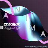 catalyst: anima (live from dogglounge.com)