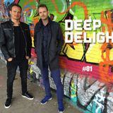 Deep Delight DJ set - June 2017